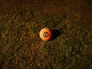 A soccer ball on grass