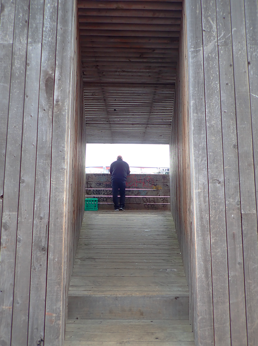 person looking out to see from an enclosed viewing platform